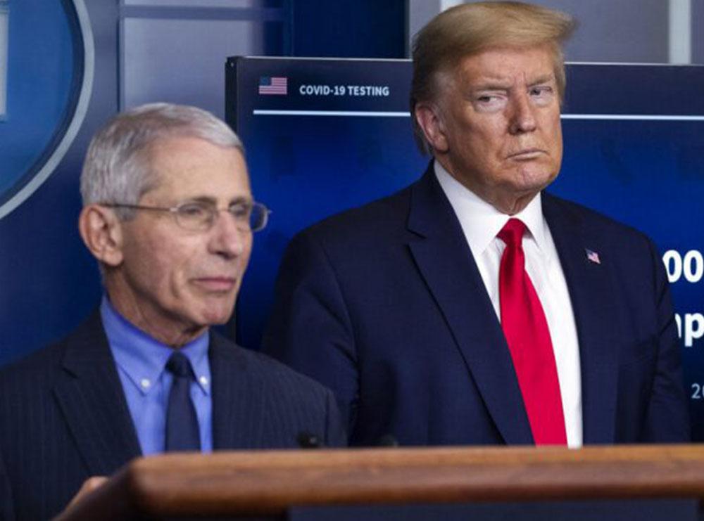 """Trump e quajti idiot, Fauci i përgjigjet me frazën nga filmi """"Kumbari"""""""
