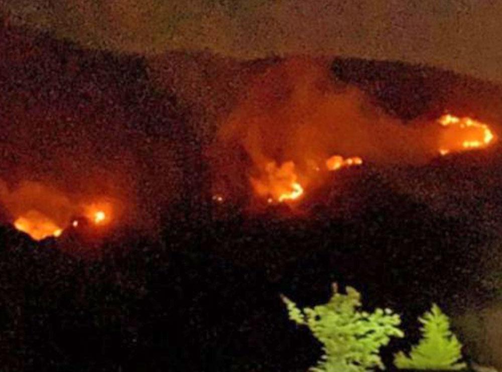 Llogaraja mes flakëve, Alban Skënderaj apel autoriteteve: Situatë serioze, ju lutem ndërhyni!
